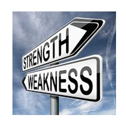 Strengths & Weaknesses are part of Our Secrets to Succeed Online
