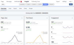 Page Insights help with your facebook post reach analysis
