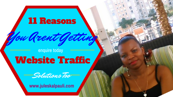 11 Reasons you're Not Getting Website Traffic or Making Money –SOLUTIONS