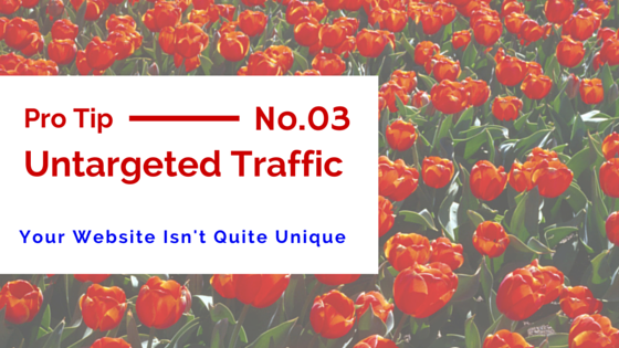11 Reasons you're Not Getting Website Traffic or Making Money –UNTARGETED