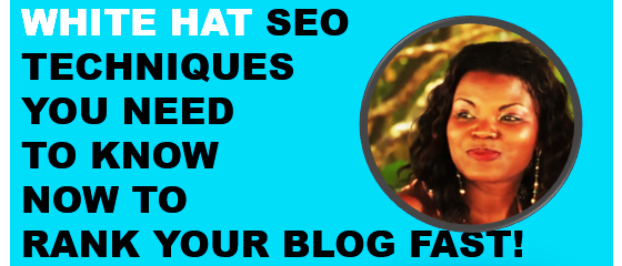 What the heck is White Hat SEO and How Can You Use it to rank Your Blog? #whiteseo #freeblogtraffic