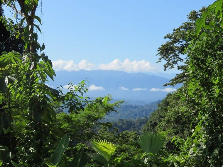 6 Networking Tips I Learned in the Wild Jungles of Costa Rica.