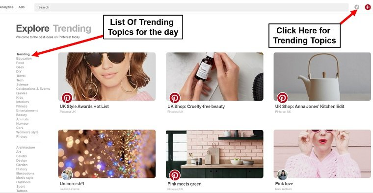 celebrity pinterest success _trending ideas