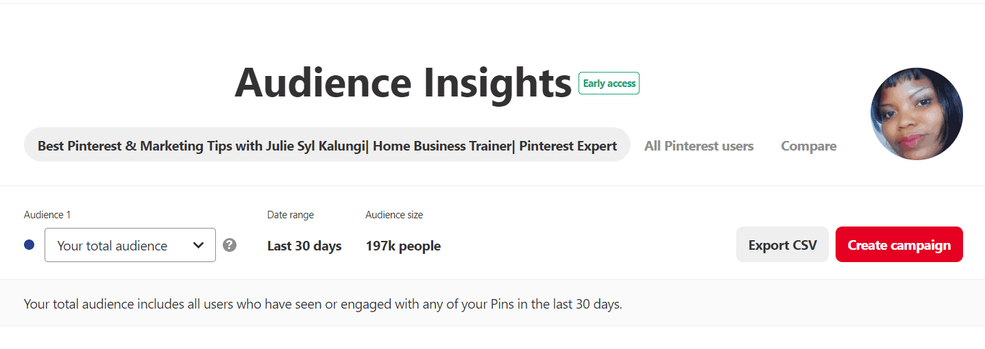 Pinterest Traffic Dead - Audience insights that work