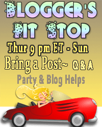 Bloggers Pit stop Banner 1